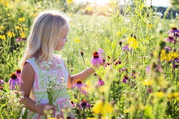 little girl 2516578 1920