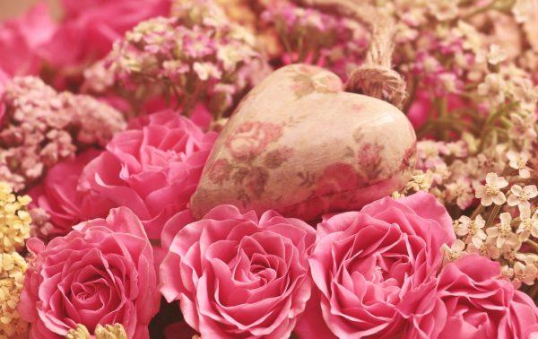 roses 3699995 1920