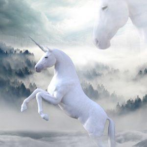 unicorn 1737897 1920