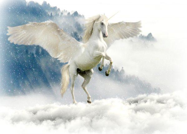 unicorn 2875349 1920
