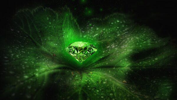 green 4928714 1920